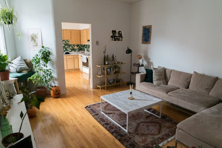 Large double Room at cozy Plateau Apartment