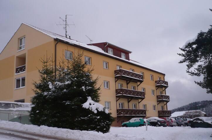 Apartmán LIPNO - Lipno nad Vltavou - Leilighet