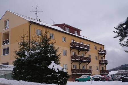 Apartmán LIPNO - Lipno nad Vltavou - Wohnung