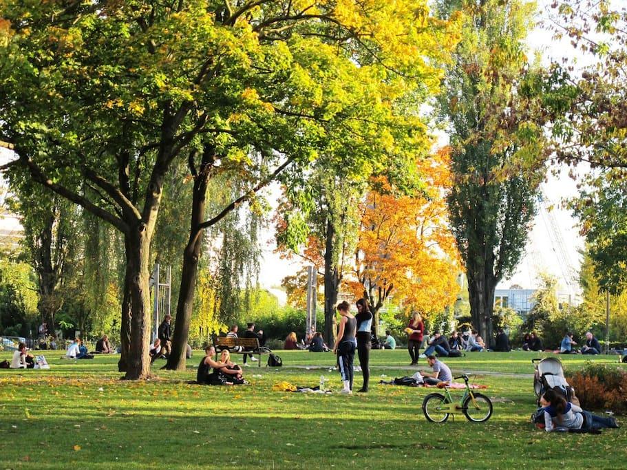 parc area just around the corner