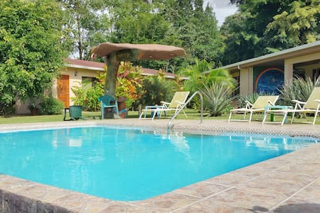 The Toucan Room - Vive Bien B&B/Wellness Center - Nuevo Arenal - Szoba reggelivel