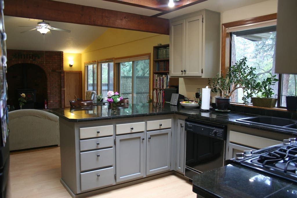 Kitchen and family/great room