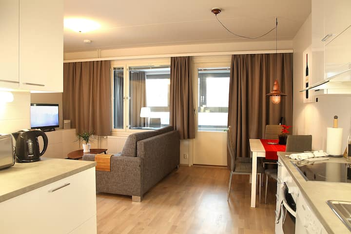 Apartment with Winter Balkon City Center