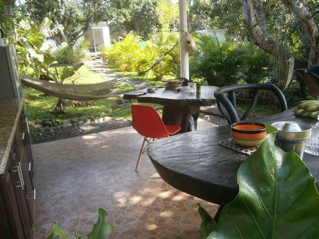 Organic Garden - Coral Room