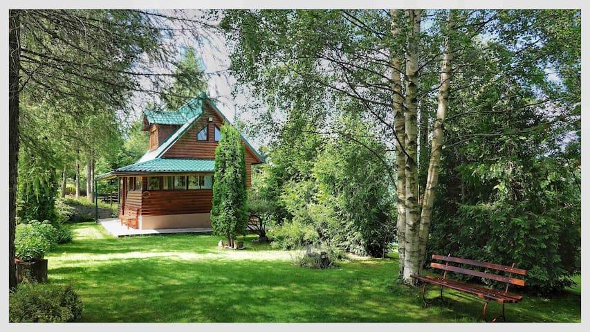 The fairytale cabin