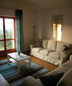 2 Bed apartment in Albareto - Case Mirani - 아파트
