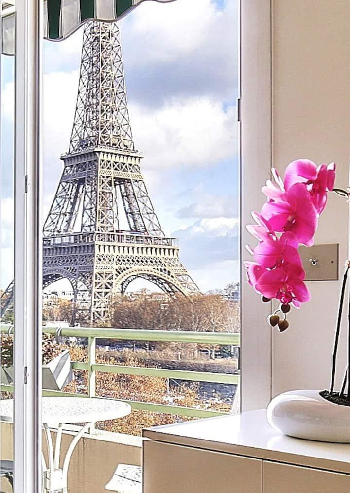 "Fantastic view ""Eiffel Tower""(1618)"