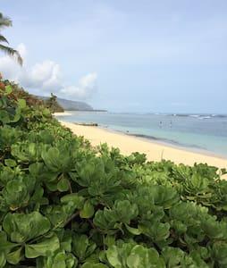 Ocean escape - Waialua - Casa