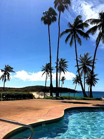 Magical Molokai,Ocean front, Steps to best beaches