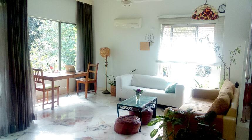 Designer's Tree House - Whole Apartment :)