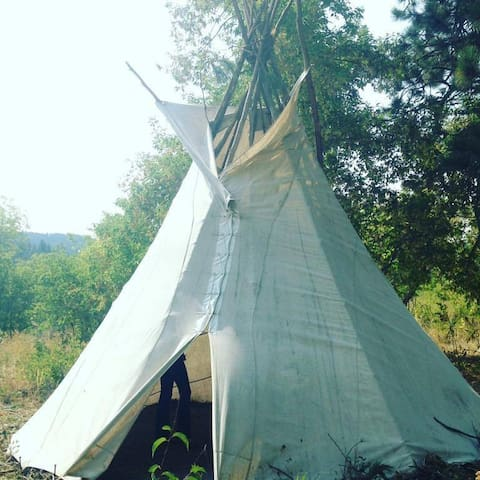 Rustic Tipi Stay close to Big Horn Mountains