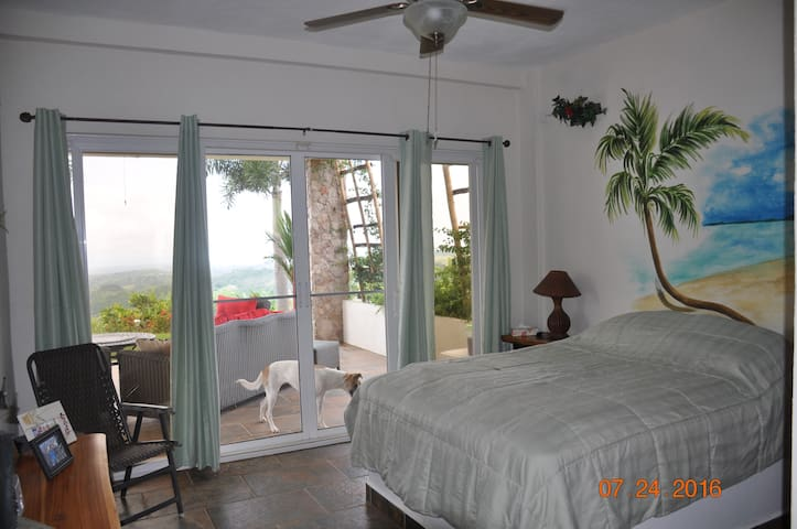Hawk's Nest B&B (Garden View Room) - La Laguna