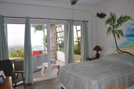 Hawk's Nest B&B (Garden View Room) - La Laguna