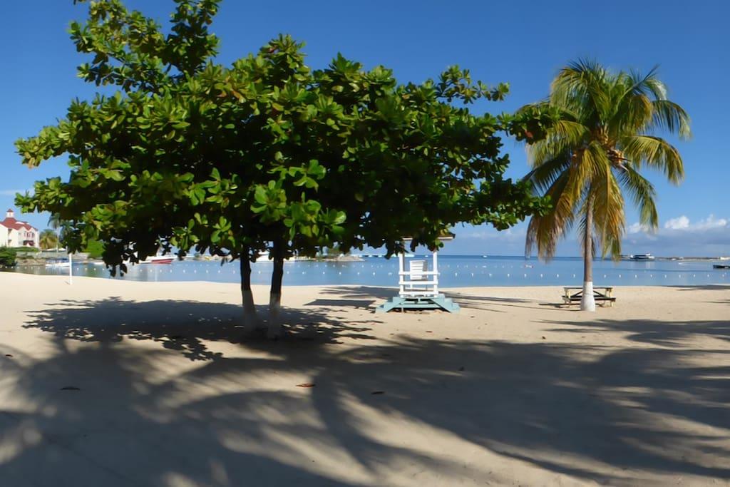Beach Pana