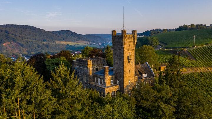 Saar Castle – cozy Mansion near vineyards