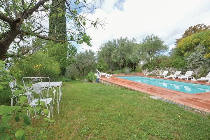 Tuscan house in olive garden, with swimming pool - Houses for Rent ...