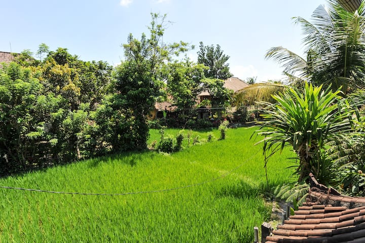 Family House In The Heart Of Ubud Villas For Rent In Ubud Bali Indonesia