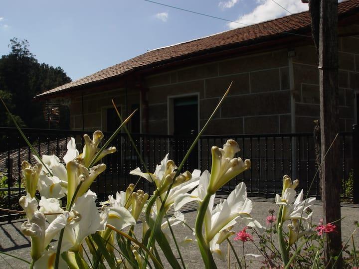 Casa en Viñoas (Ribeira Sacra) - Ourense