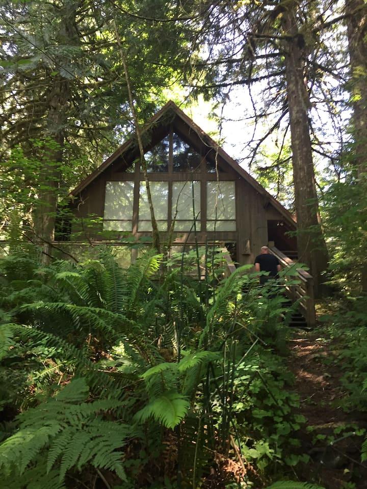 Zig Zag Mountain Home