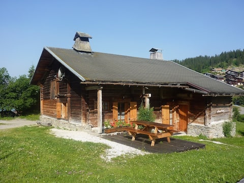 Chalet 2 flats in Massif of Aravis in the pastures