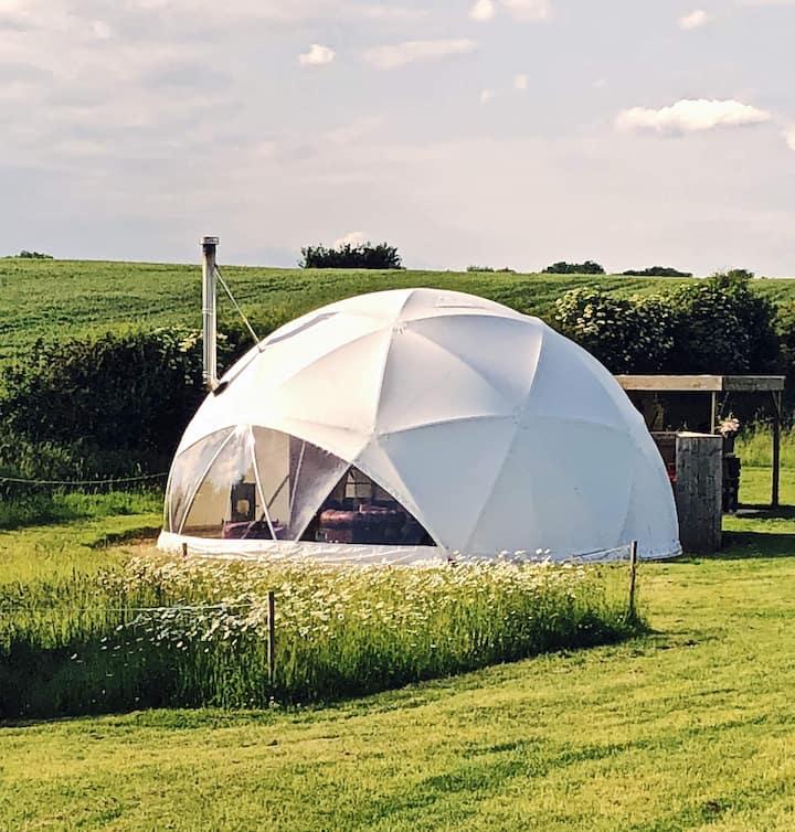 Dome 4 Exton