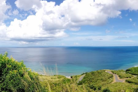 Frigates View