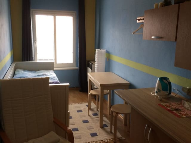 Cosy small room, 1 bed, shower, WC, 15 m2