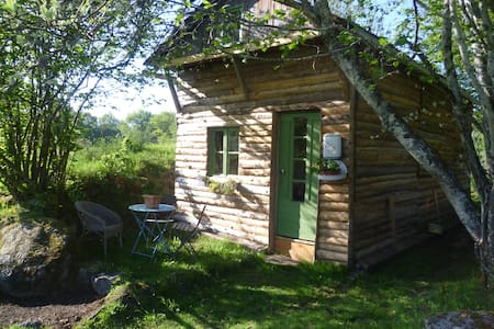 cabane pleine nature