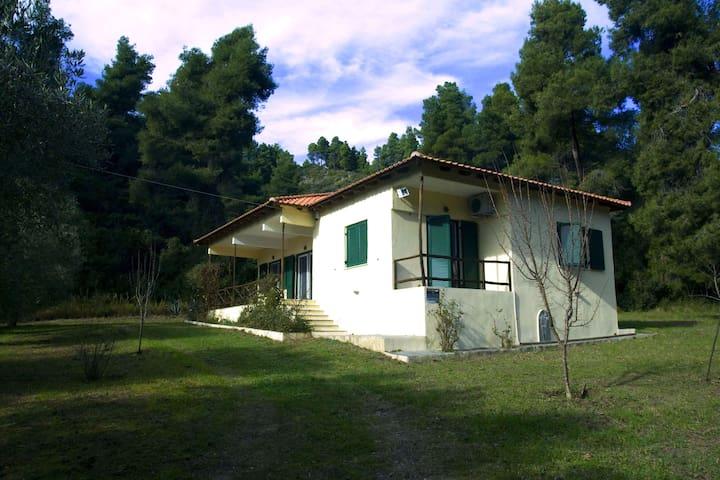 Pine Tree Cottage - Moles Kalives - Huis