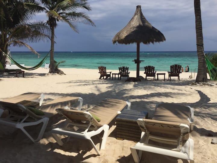 Caribbean Beachfront Apartment