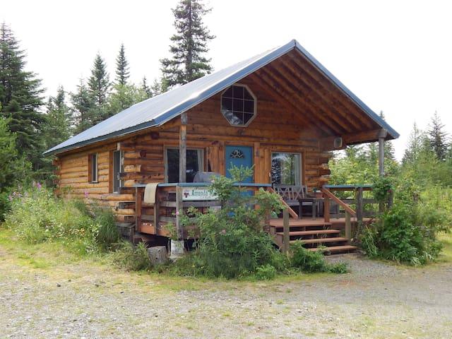 Willow Cabin Anchor Point Alaska!