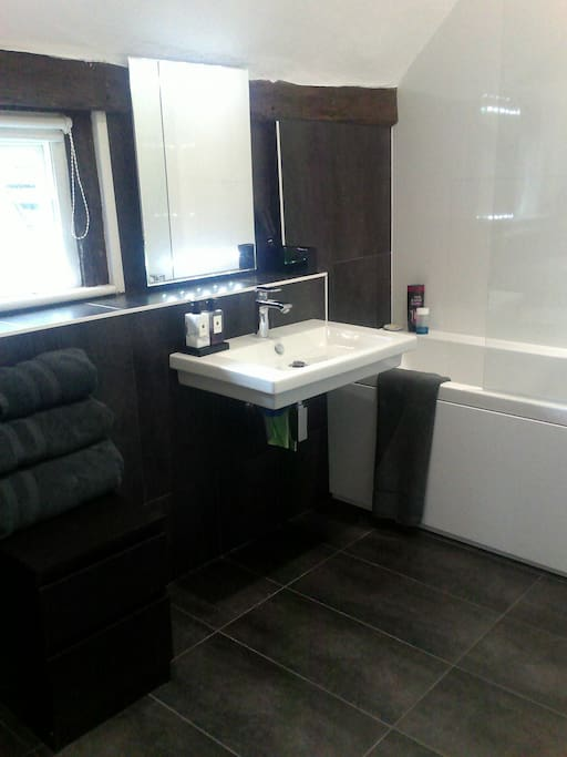 Modern bathroom -  basin, loo bath and shower