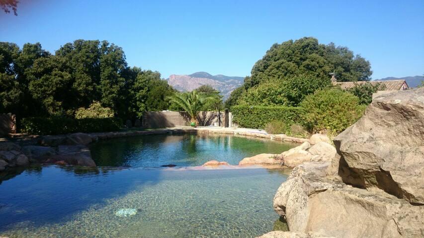 Résidence vacances max 20 pers (4 villas) Ajaccio - アジャクシオ - 別荘