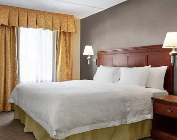 ✨ Standard One Bedroom King