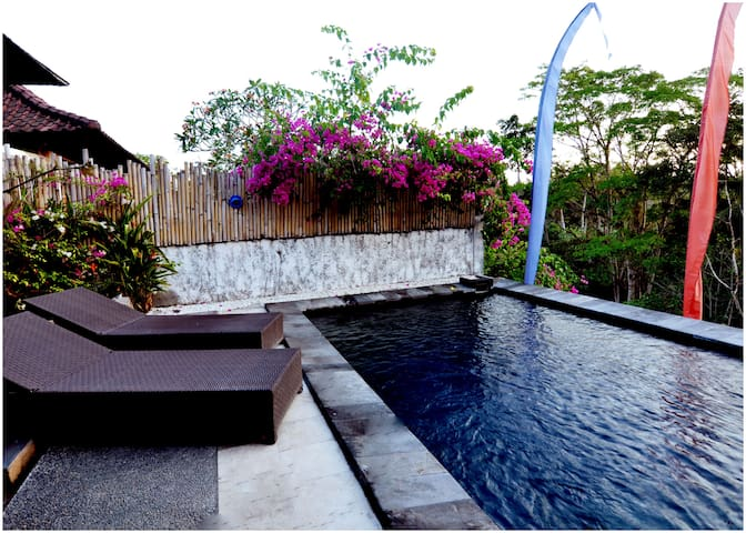 Ubud River View Villa with private pool