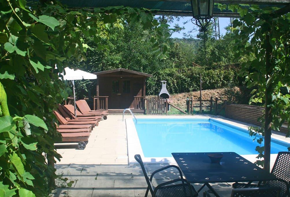 Pool terrace from pergola