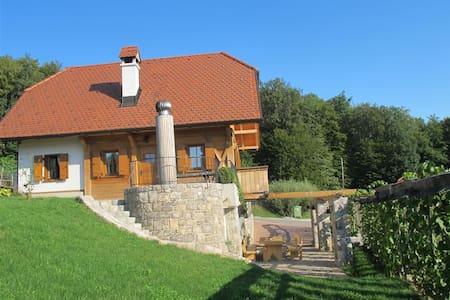 Vineyard cottage Ravbar - Uršna Sela