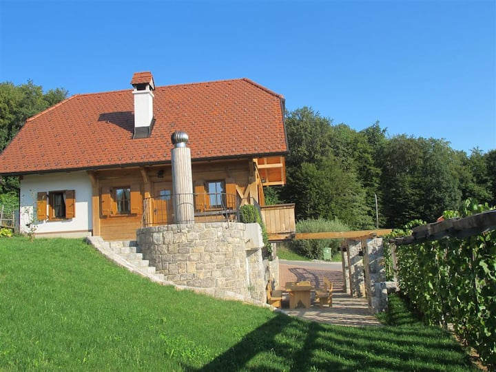 Vineyard cottage Ravbar