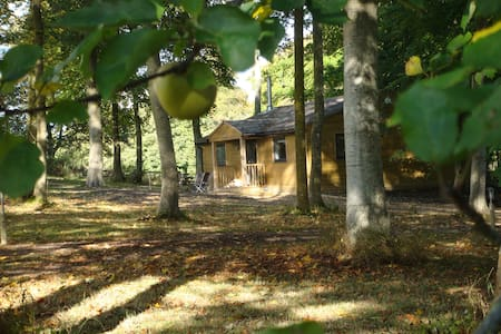 Luxurious cabin in the woods near Longleat - Warminster - Sommerhus/hytte