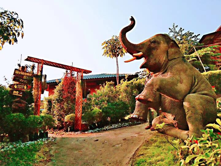 Gold Elephant Park金象园  大象叫早一号房
