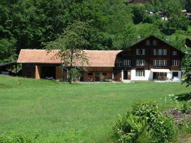 Gemütliche Wohnung in ehemaligem Hasli-Bauernhaus - Hasliberg - อพาร์ทเมนท์