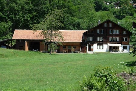 Gemütliche Wohnung in ehemaligem Hasli-Bauernhaus - Hasliberg - Huoneisto