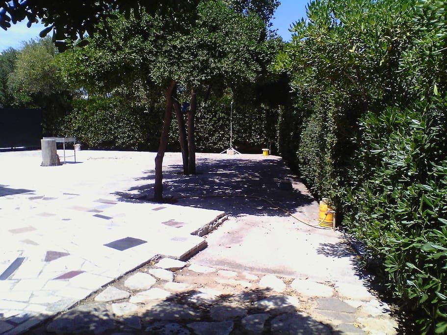 giardino pavimentato e alberato