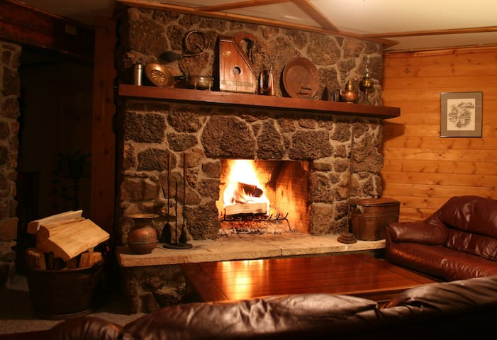 Wood burning fireplace in common area