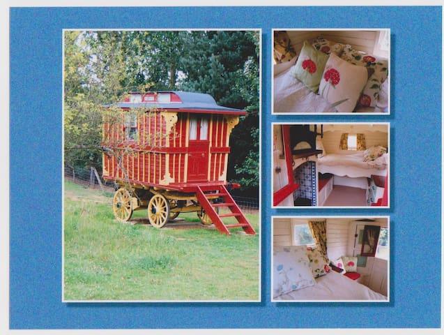Burton Gypsy Wagon - Essex - Blockhütte