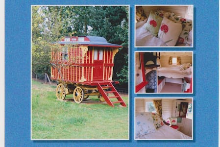 Burton Gypsy Wagon - Essex - Cabin
