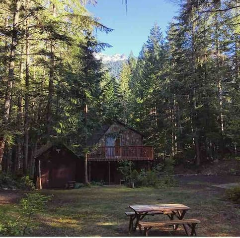 Lake Cushman Rustic Cabin.