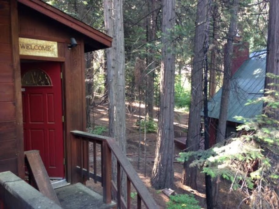 """If Hilltop is booked please check out our other cabin in Fly-in-Arce's lake. Its """" Gone Fishing """""""