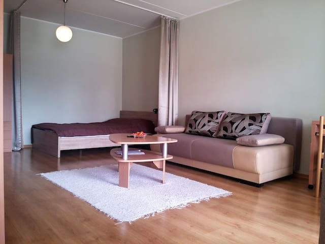 Cozy 38m2 studio for 1-4 people :) - Tartu - Apartamento