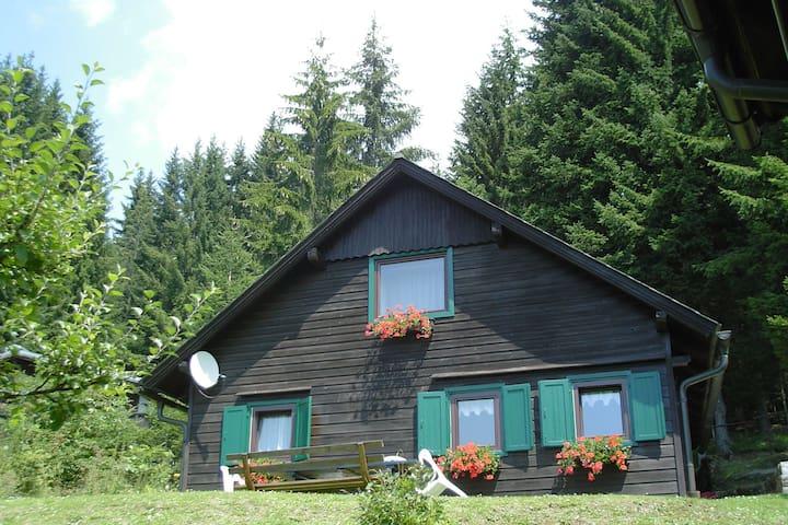 Komfortables Ferienhaus mit Sauna in Sankt Stefan